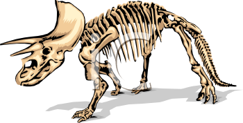 Fossil clipart. Panda free images info