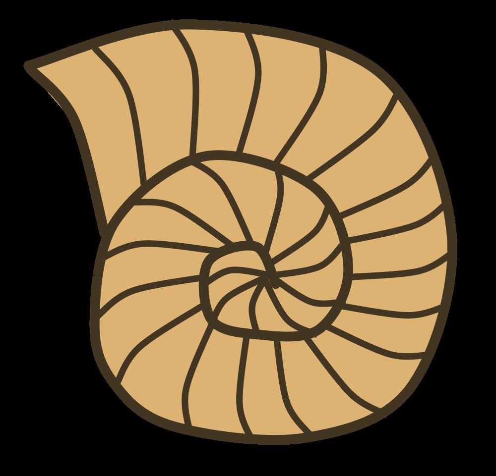 Onlinelabels clip art. Shell clipart shell snail