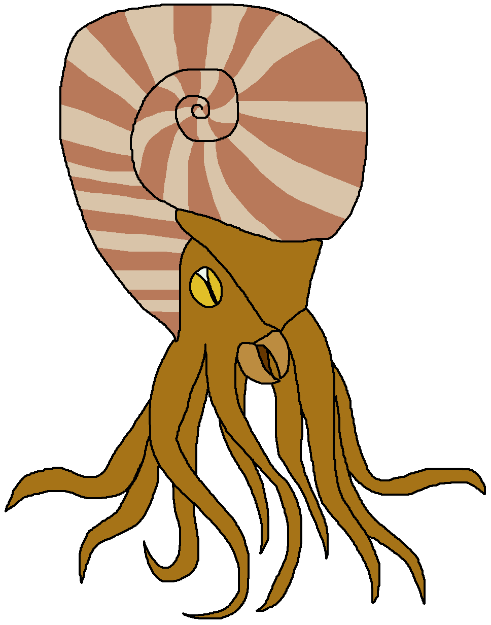 Dinosaur pedia wikia fandom. Shell clipart ammonite