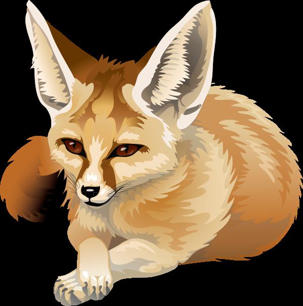 Fox clipart bat eared fox.  collection of digital