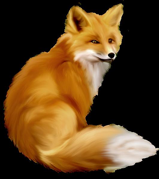 Fox clipart carnivore, Fox carnivore Transparent FREE for ...