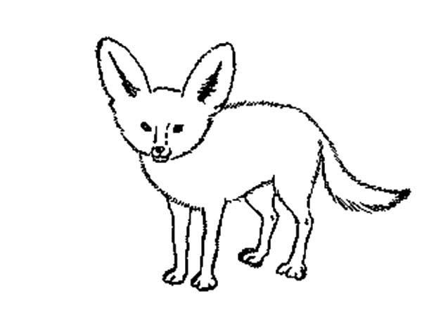 Free cliparts download clip. Fox clipart desert fox