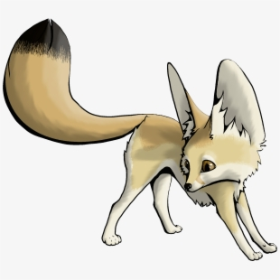 Arctic fennec easy drawings. Fox clipart desert fox