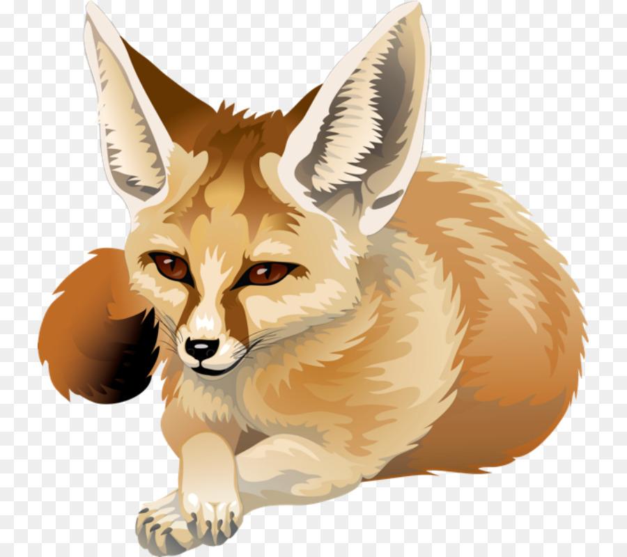 Fox clipart fennec fox. Drawing wildlife transparent