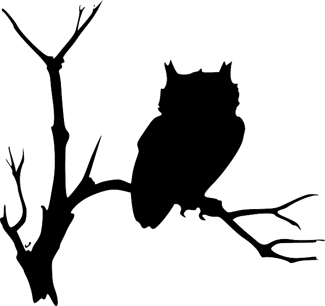 Halloween clipart bird. View source image graphic