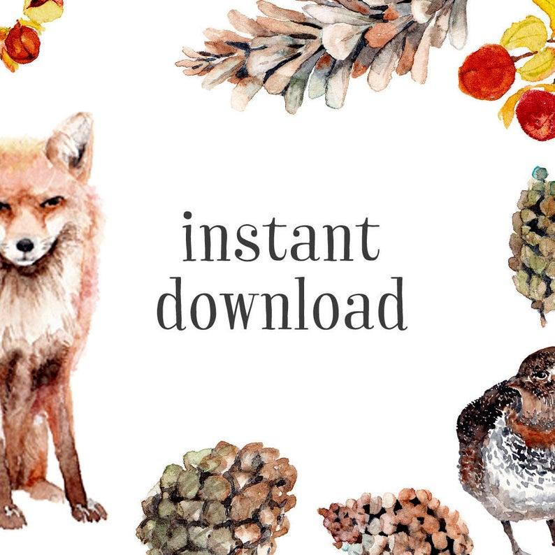 Fox clipart rustic. Woodland handpainted watercolor fall