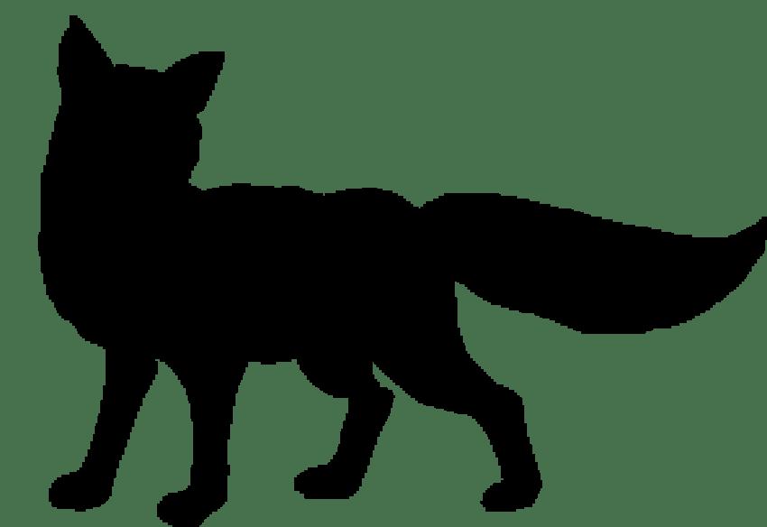 Fox transparent background