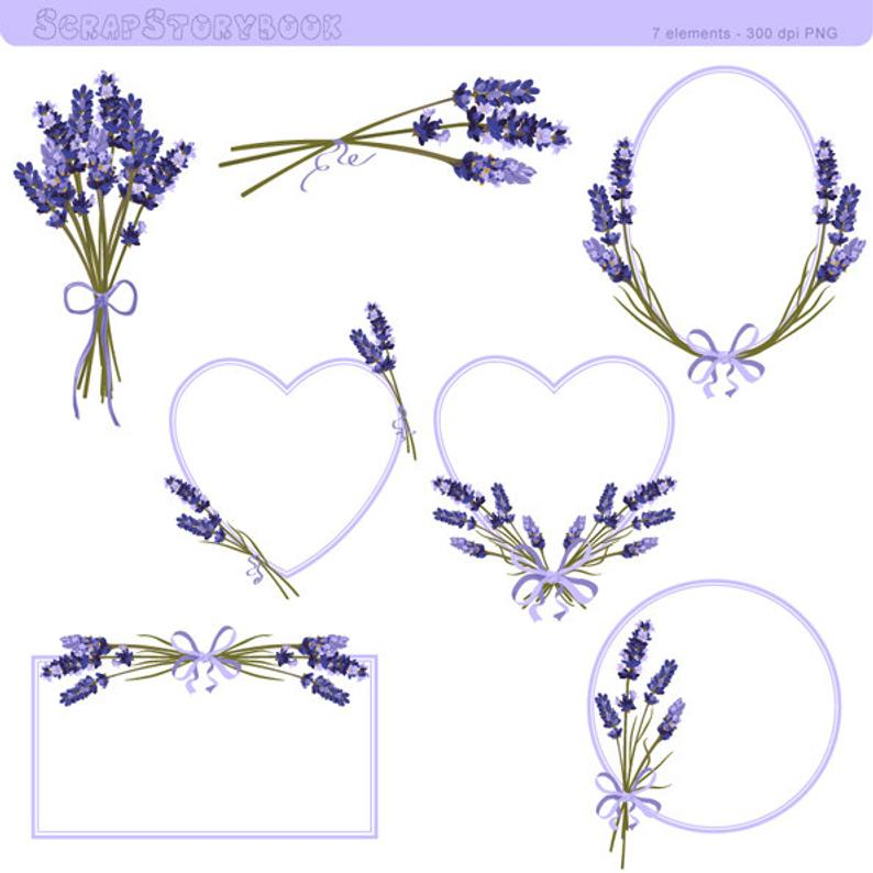 Flower and dpi png. Lavender clipart frame