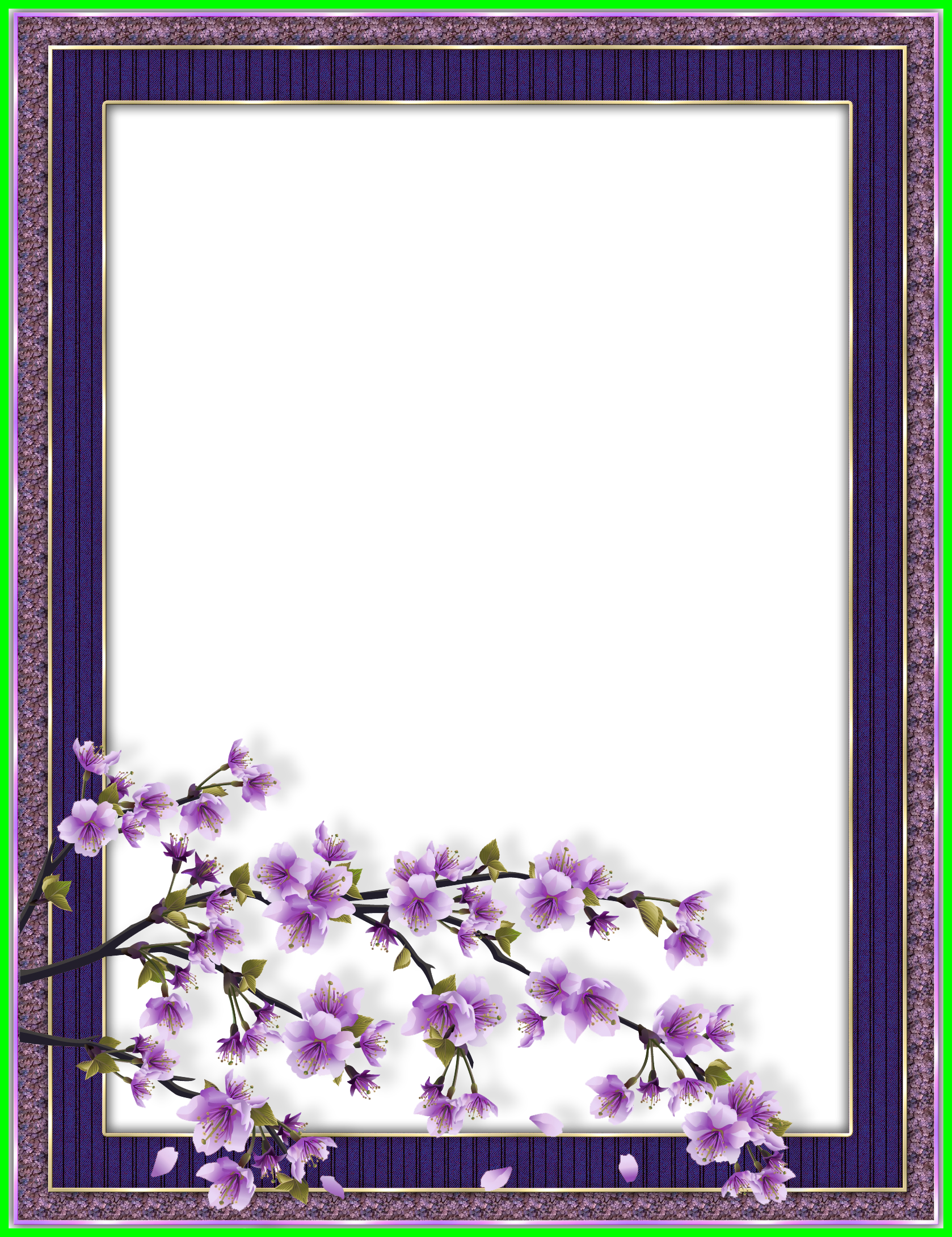 Best purple transparent flower. Lavender clipart frame