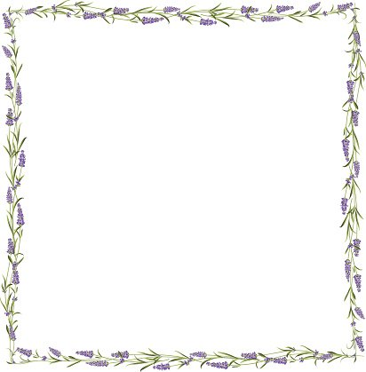 Lavender clipart frame. The line premium clipartlogo