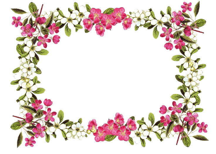 Flowers transparent stickpng. Rose frame png