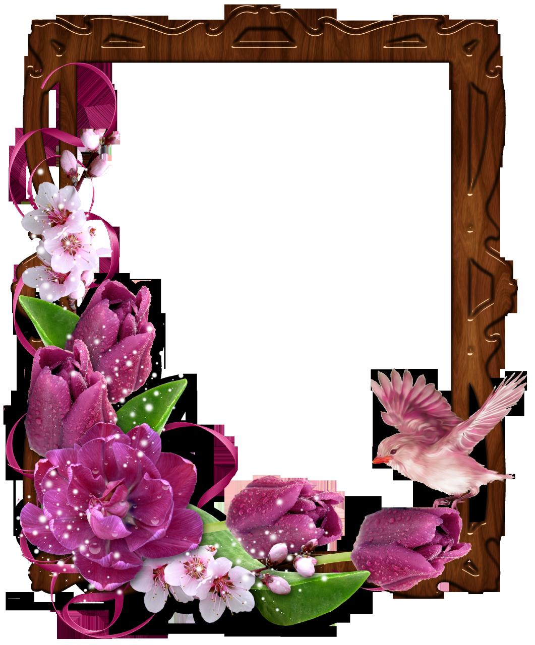Frames clipart bird. Floral border wooden photo