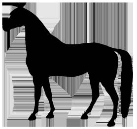 Frames clipart horse. Silhouette black