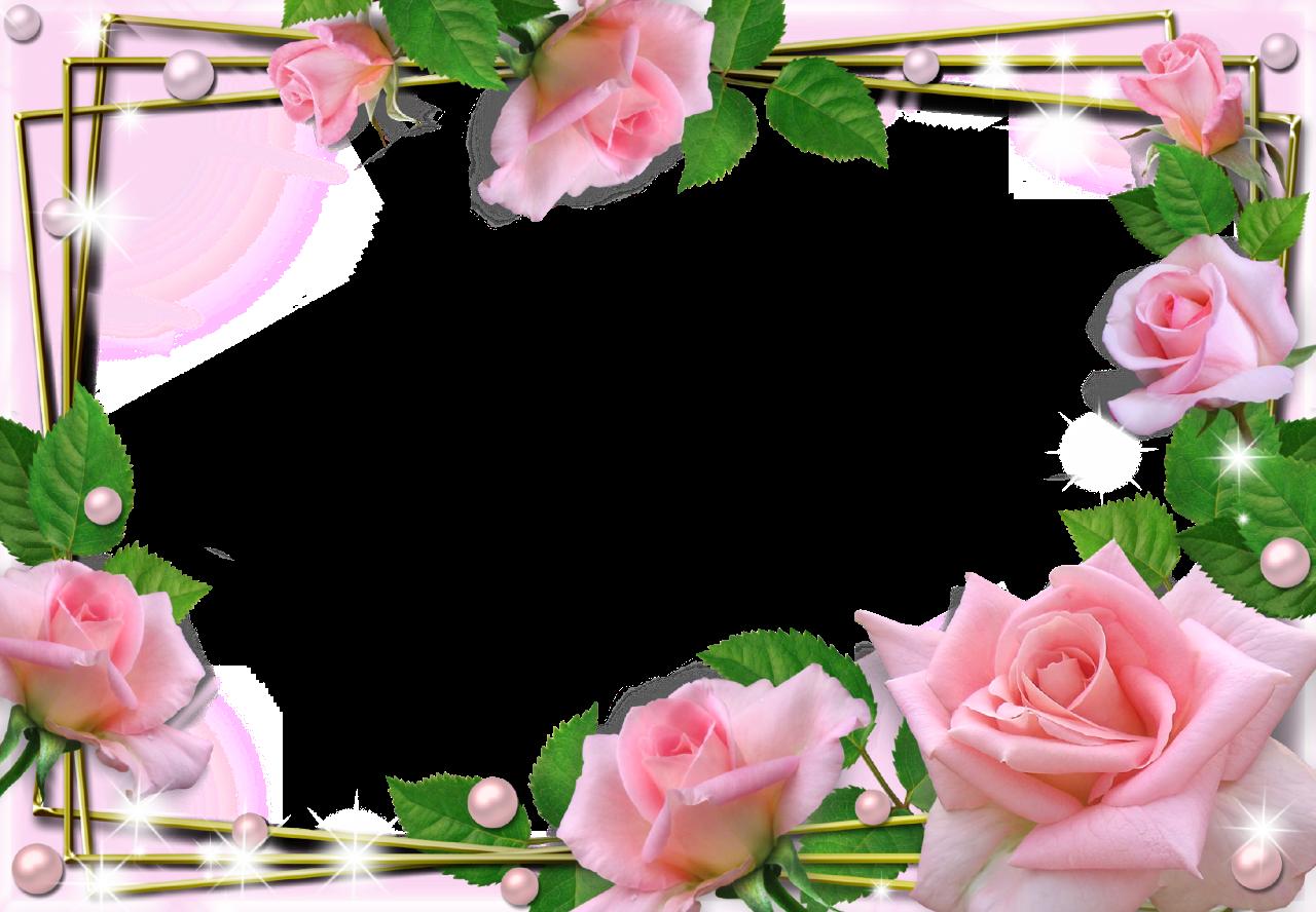 Frames clipart pink rose, Frames pink rose Transparent FREE for download on WebStockReview 2020