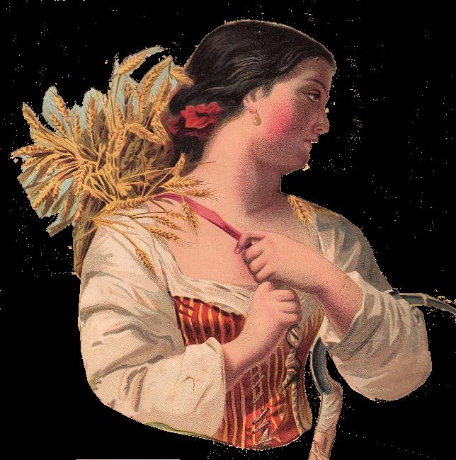Wheat clipart wheat harvest. Autumn clip art woman