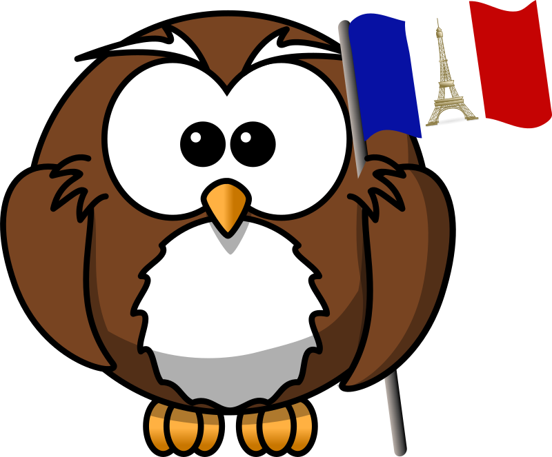 France clipart cartoon. Owl with french flag