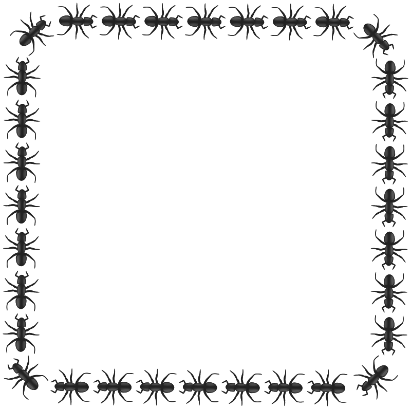 Frame black ants red. Free clipart ant