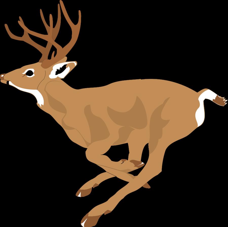 Best deer art vector. Hunting clipart target hunting