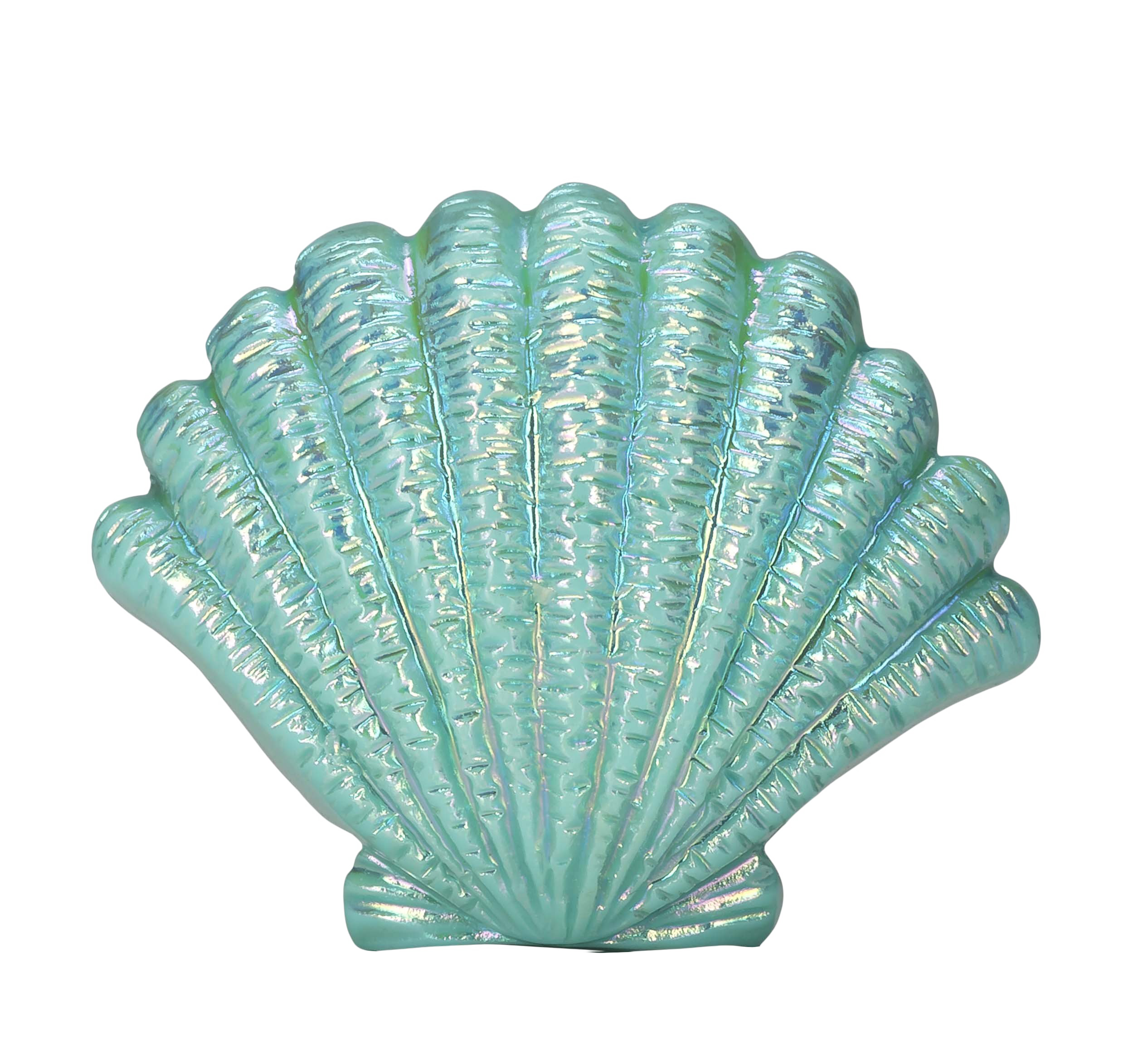 Shell clipart blue sea. Seashell png image purepng