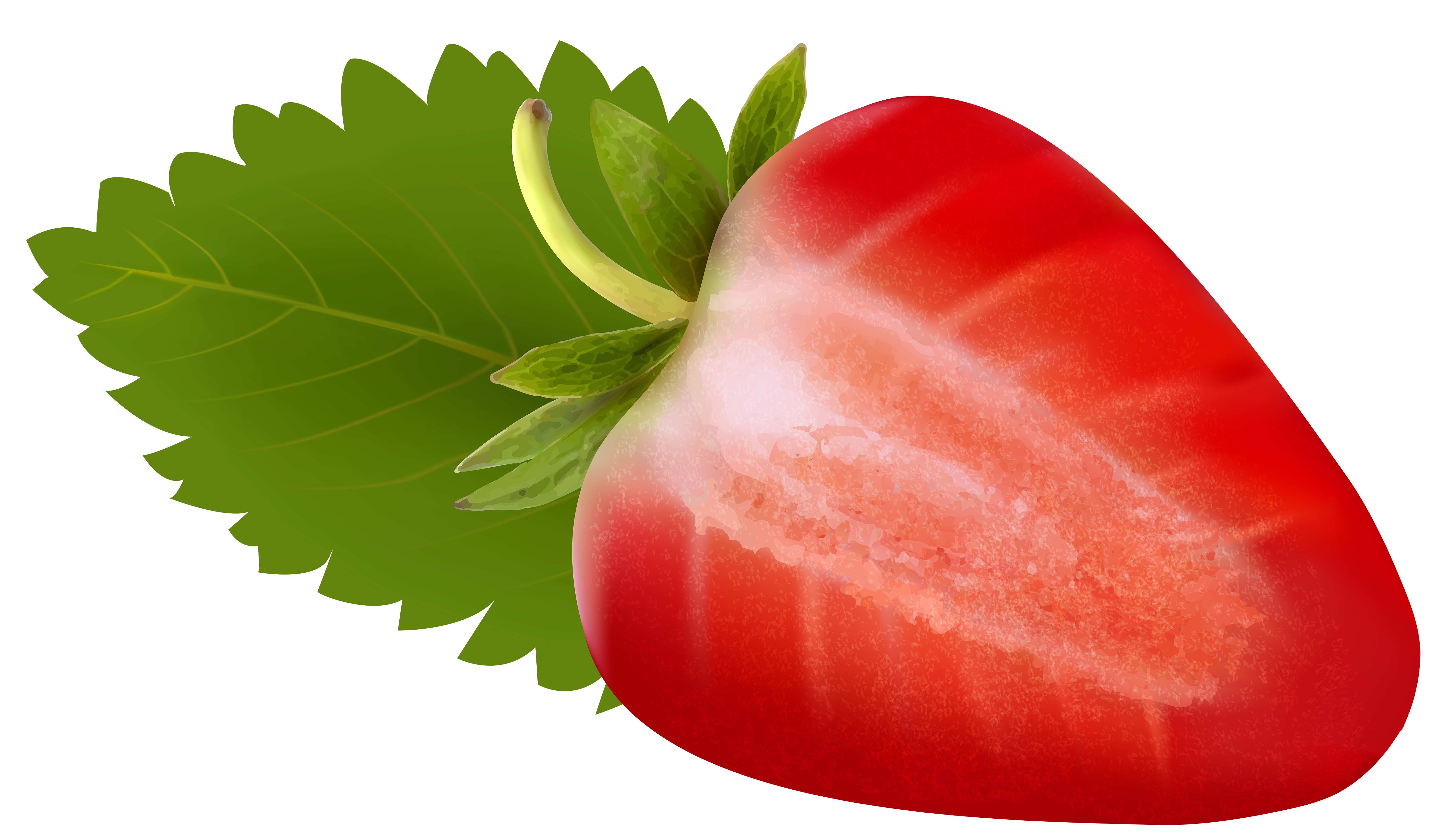 Free clipart strawberry. At getdrawings com for
