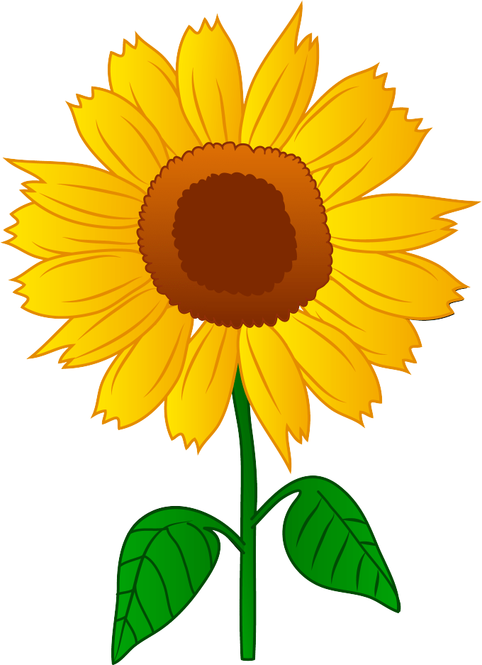 Images of sunflowers siewalls. Free clipart sunflower