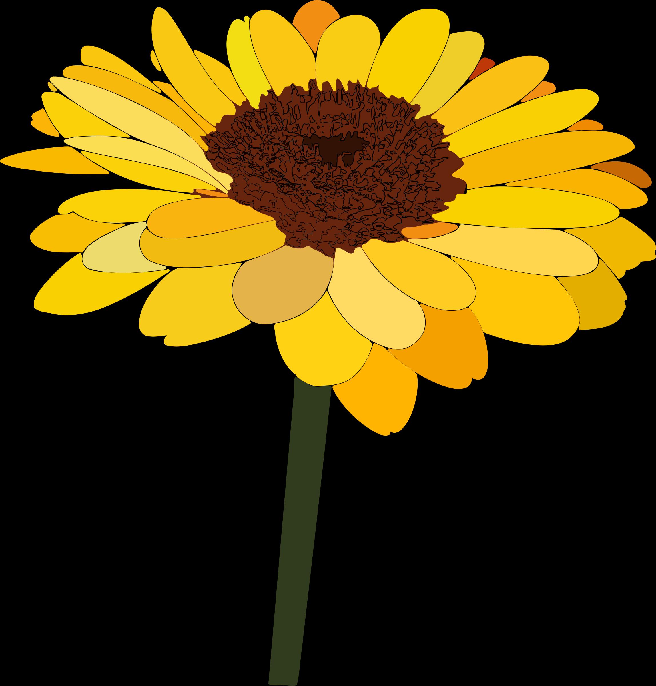 . Free clipart sunflower
