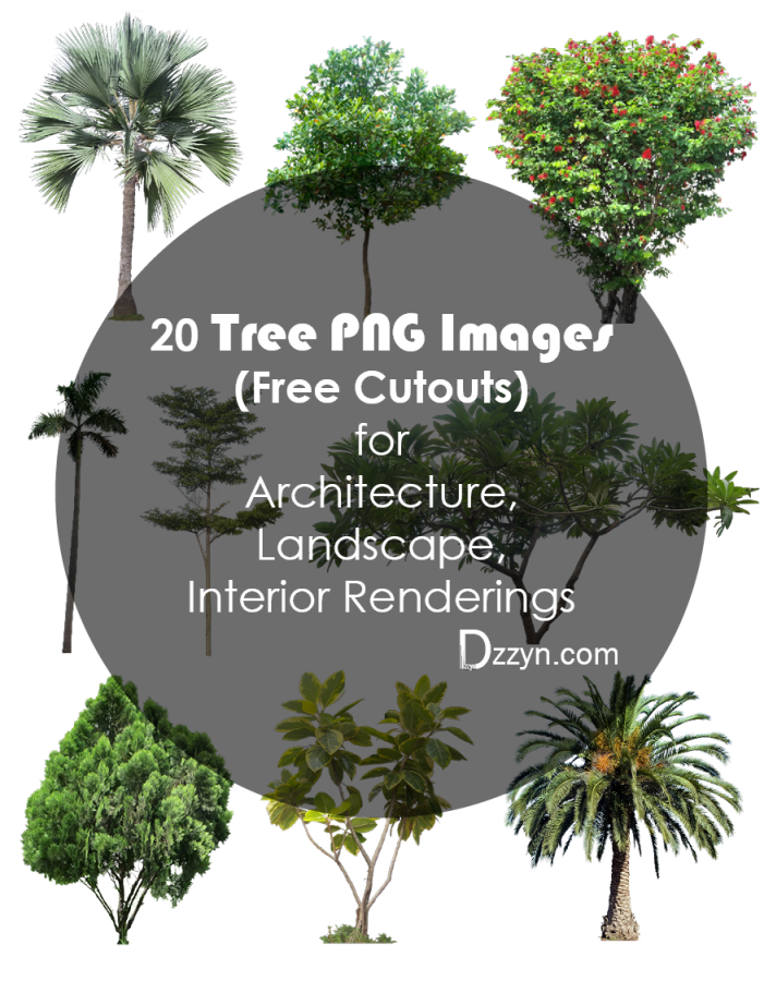 tree cutouts architecture. Free png images for photoshop