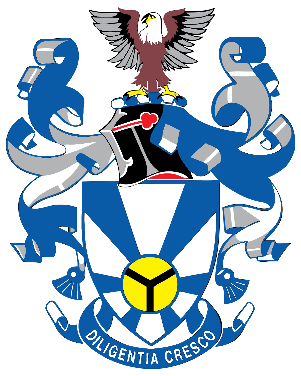 University of zululand wikipedia. Organization clipart chairman