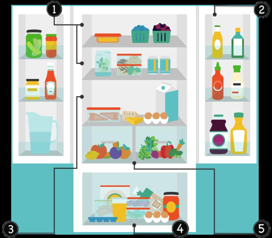Home cartoon refrigerator kitchen. Fridge clipart food clipart