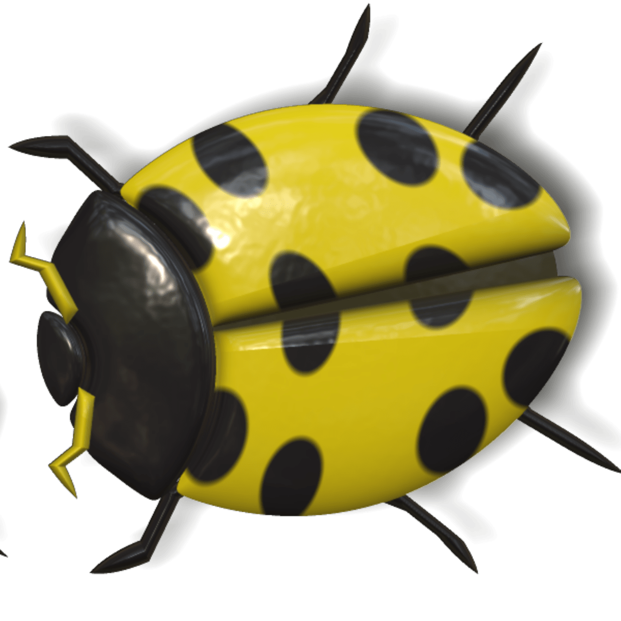 And black transparent png. Ladybugs clipart yellow ladybug