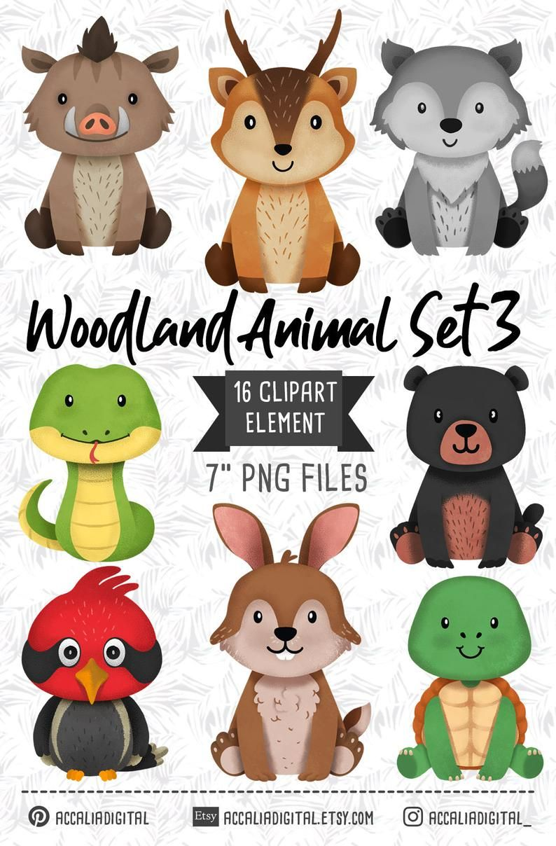 Wolves clipart kid. Woodland animals wolf bear