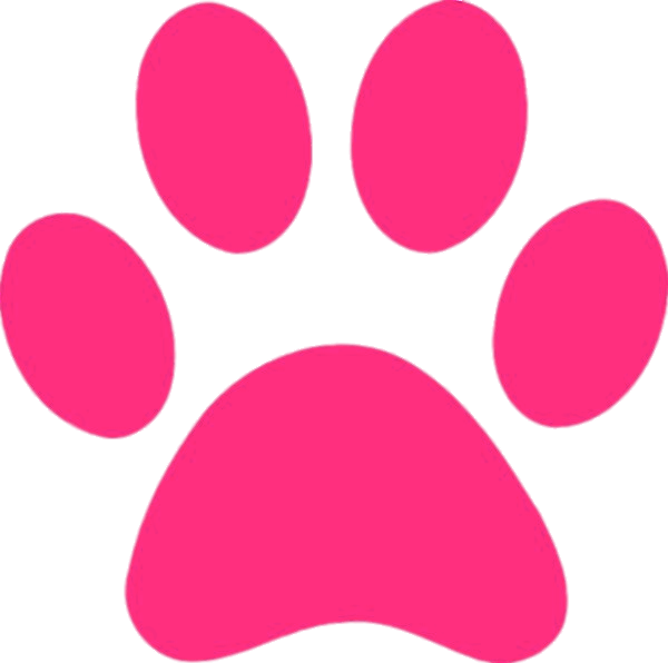 Friendly clipart panther. Pink paw print transparent
