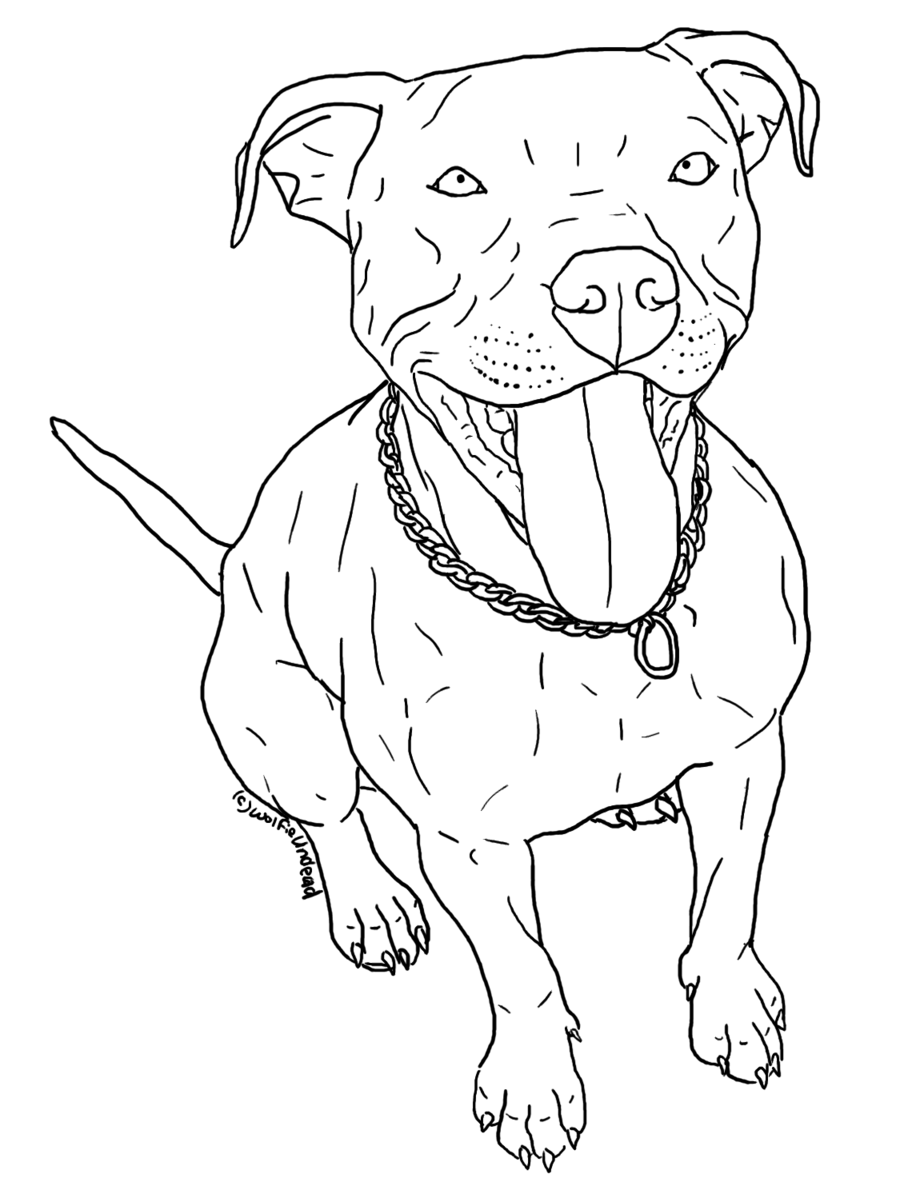Pitbull puppies drawing at. Husky clipart coloring page