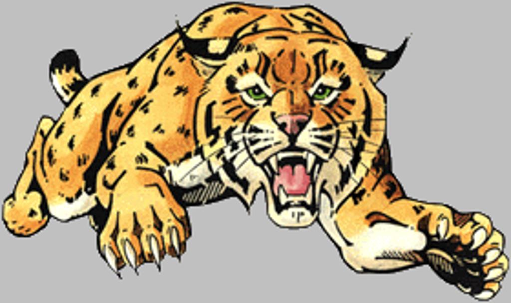 Boys hockey goal crease. Wildcat clipart wild cat