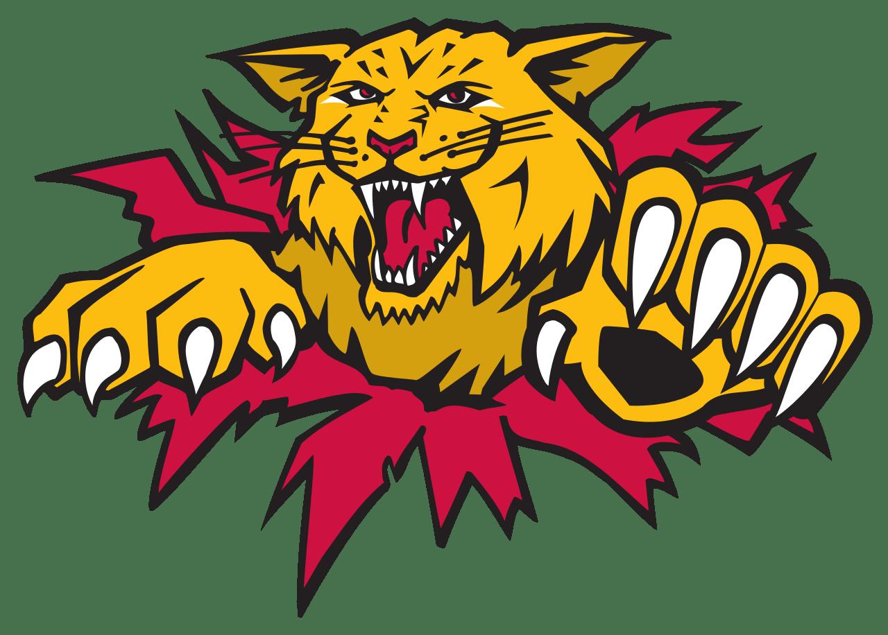 Moncton wildcats logo transparent. Wildcat clipart clip art