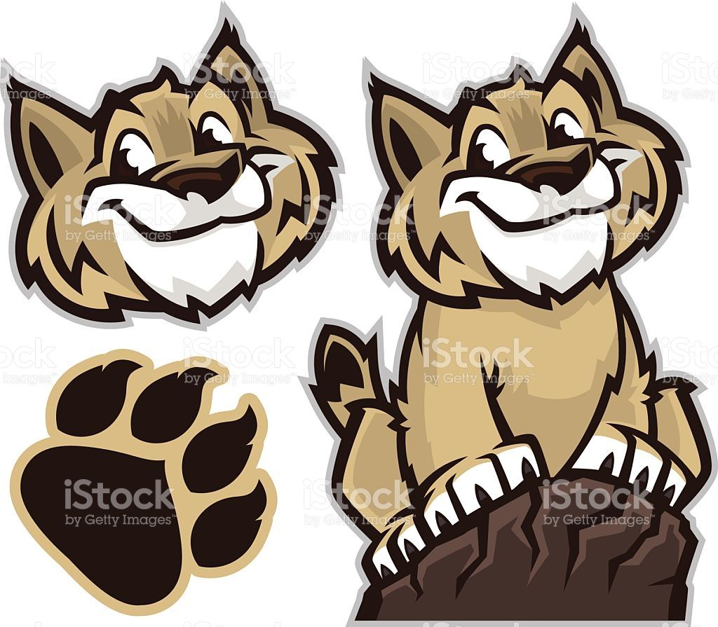 Cartoon drawing of a. Wildcat clipart animated