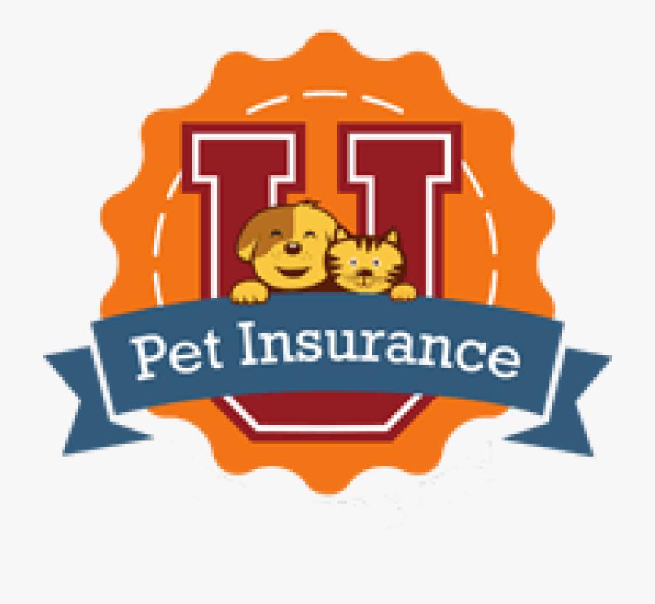 Pet insurance . Friendship clipart congenial