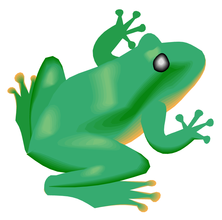 Free frog. Rainforest clipart rainforest floor