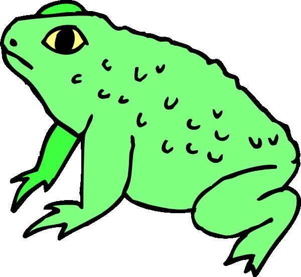 Warty clip art at. Frog clipart bullfrog