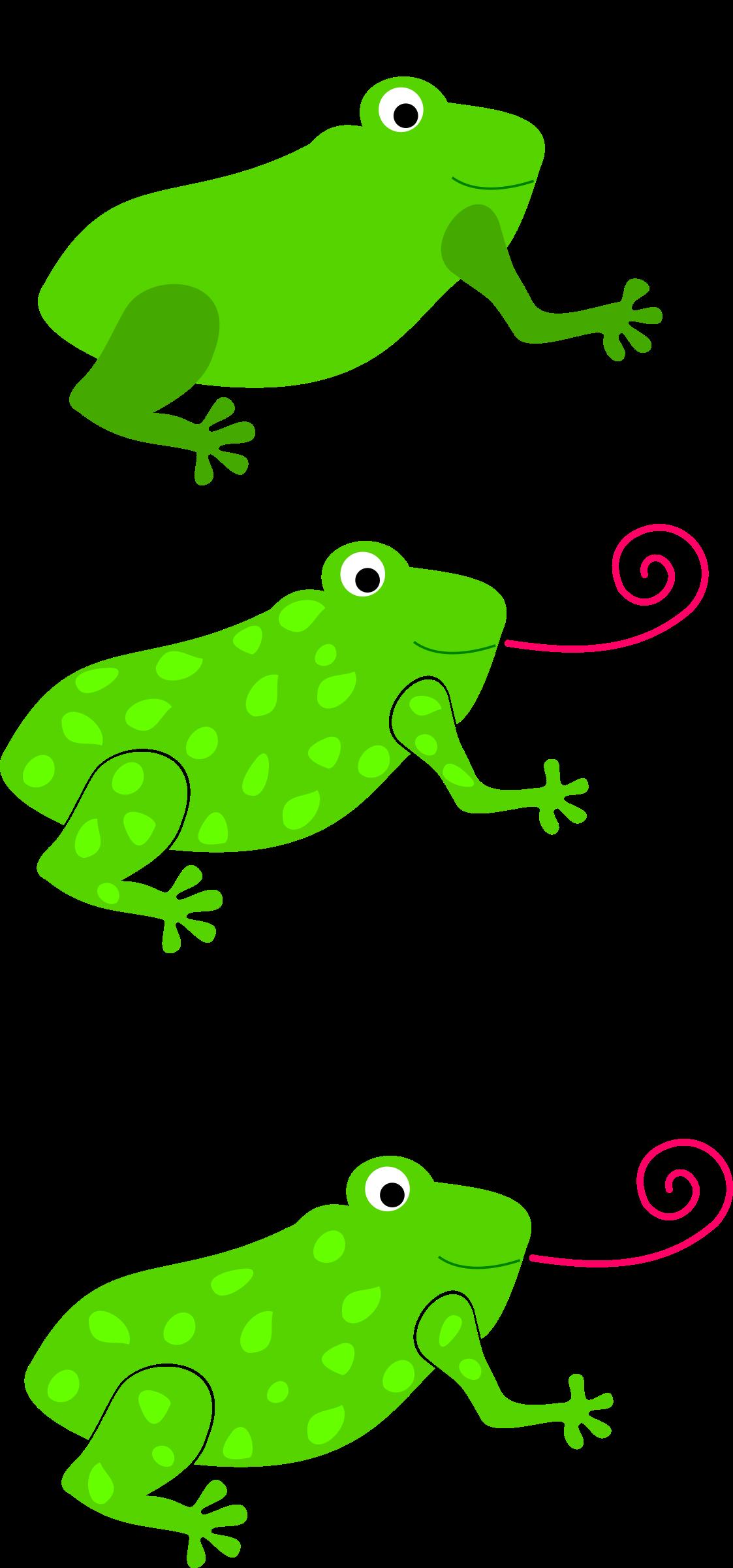 Frog clipart bullfrog. Granota grenouille big image
