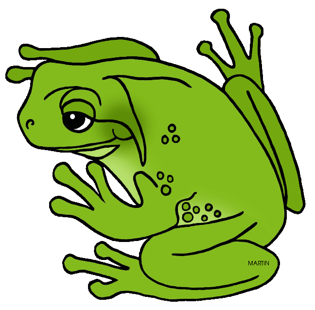United states clip art. Frogs clipart amphibian