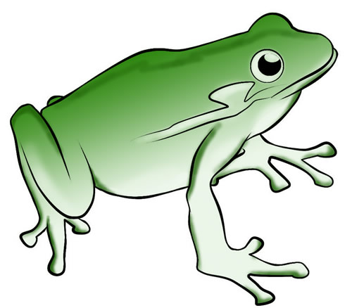 Free download clip art. Frog clipart glass frog