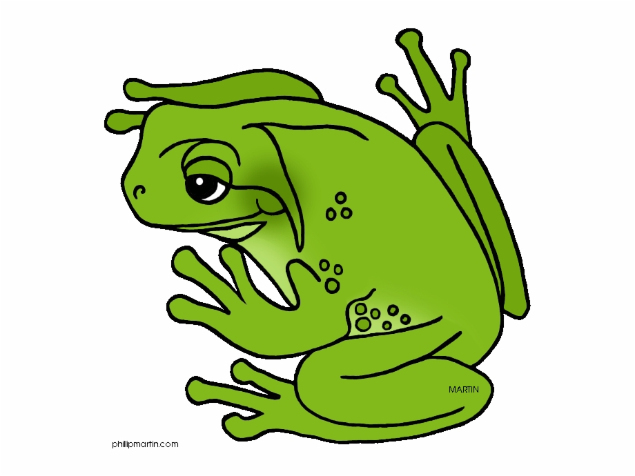 Frog clipart green frog. Cool tree free