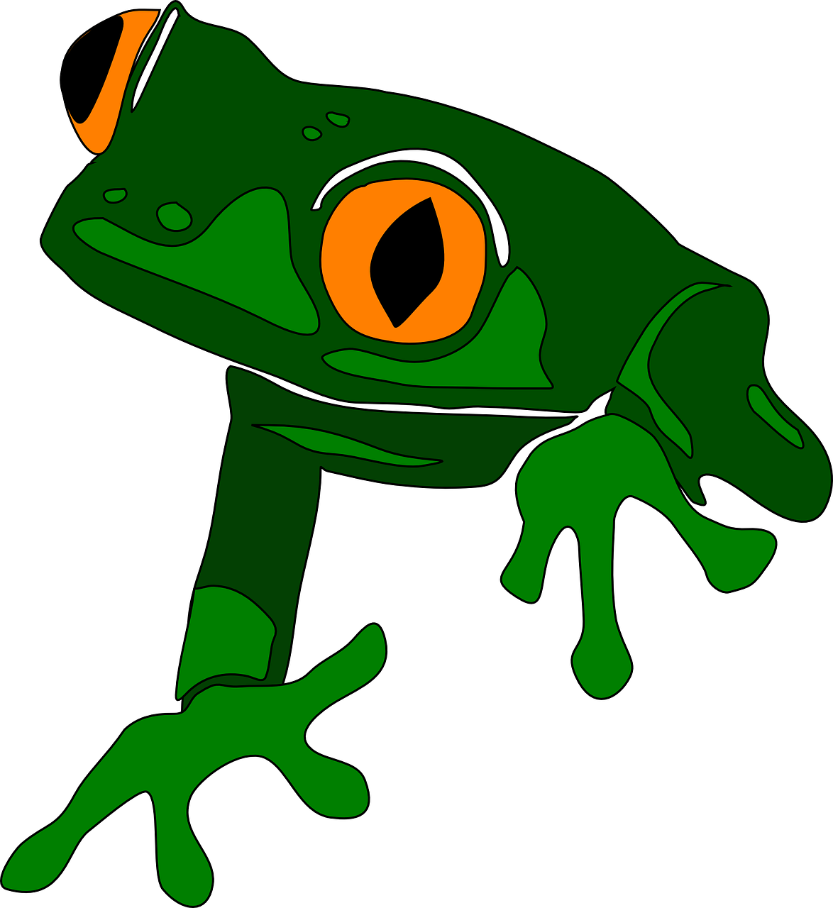 Free to use clipartix. Scientist clipart frog
