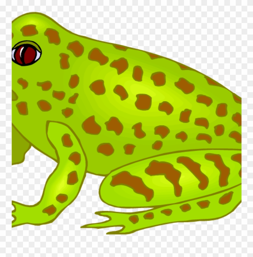 Free fish hatenylo com. Frog clipart musical