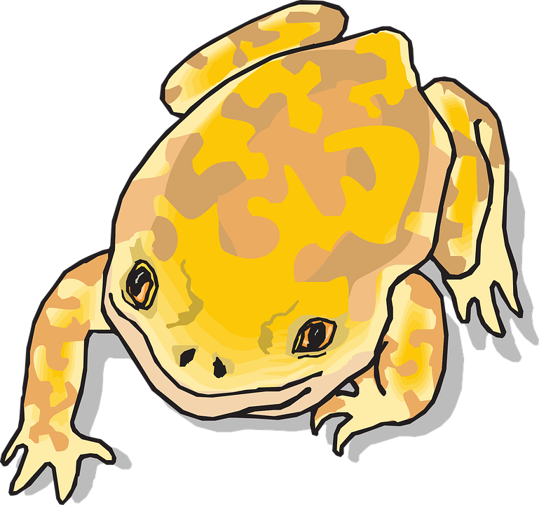 Collection of and toad. Frog clipart open mouth