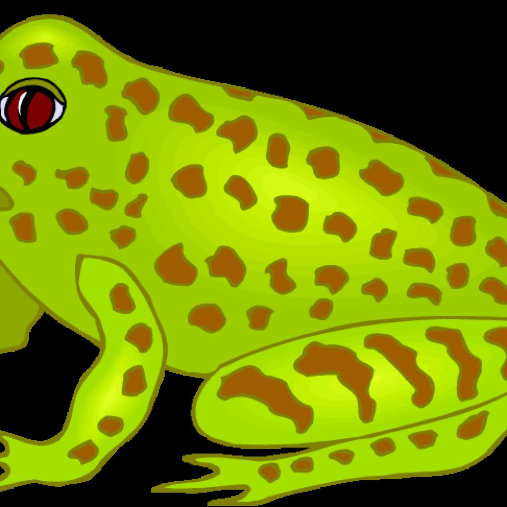 Free fish hatenylo com. Frog clipart school