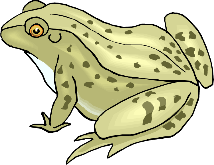 Frogs clipart toad.  collection of spotted