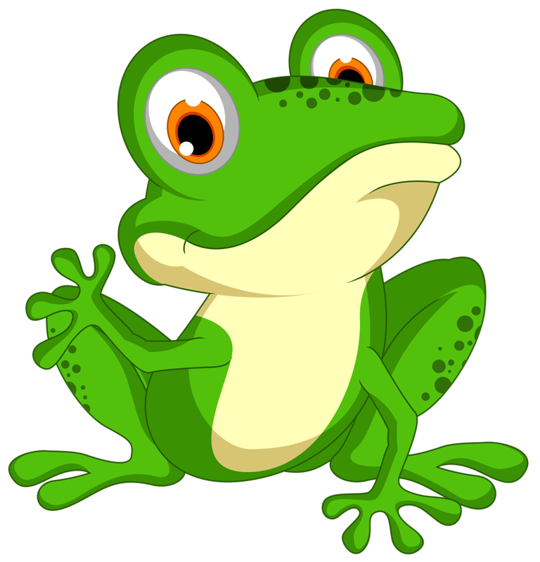 Shutterstock png pinterest frogs. Toad clipart colorful frog