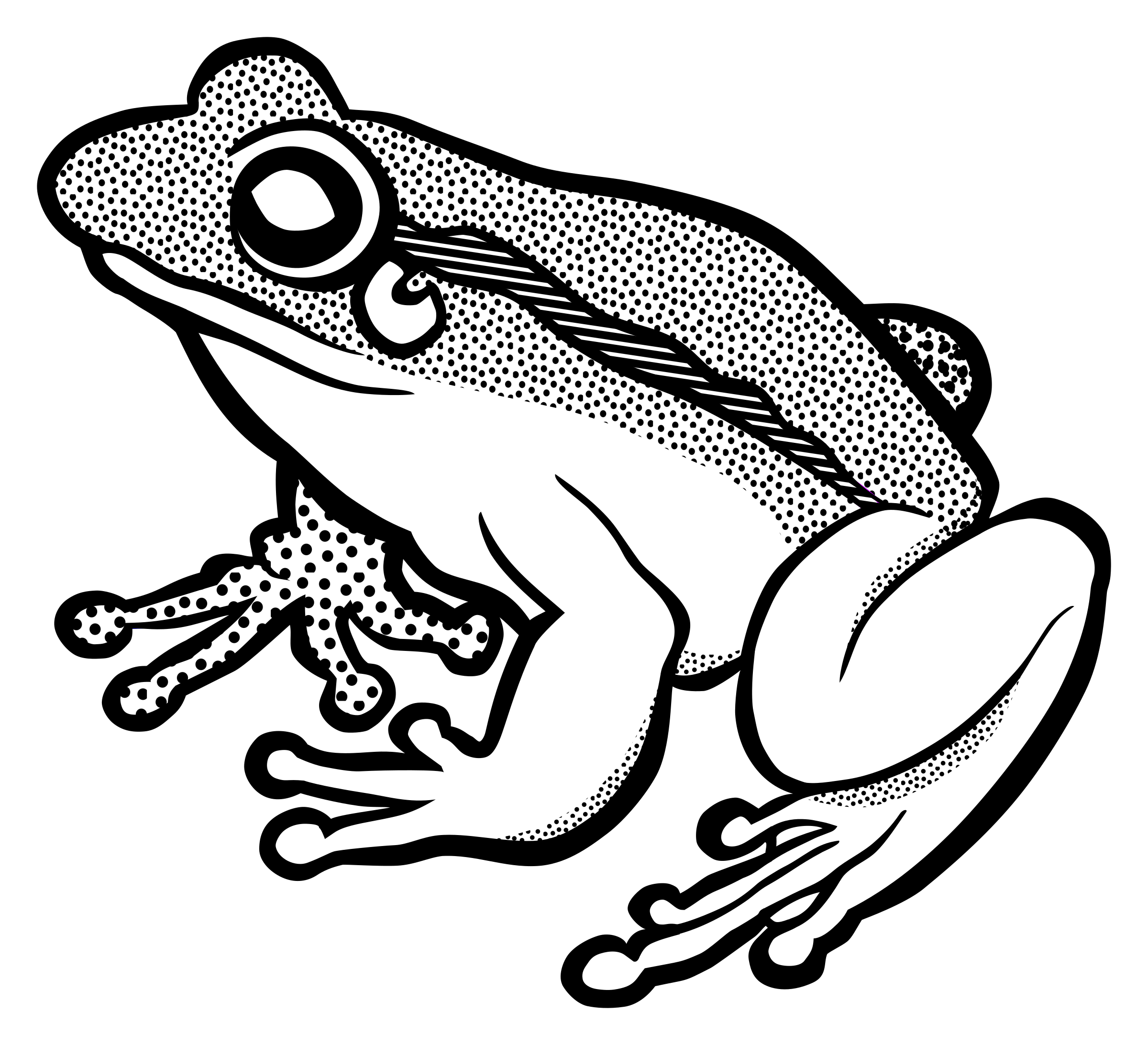 Frog clipart tree frog. Line art collection lineart